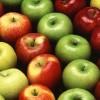 תפוחים. מקור: ויקיפדיה ברשיון שימוש חופשי. צילום: USDA photo by Scott Bauer