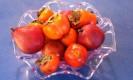 ירקות לבריאות. צילום: פורטל הוליסטיקה- רפואה משלימה