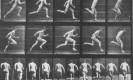 ריצה ופעילות גופנית. מקור: ויקיפדיה ברשיון שימוש חופשי . Muybridge-runner. by-W mccall